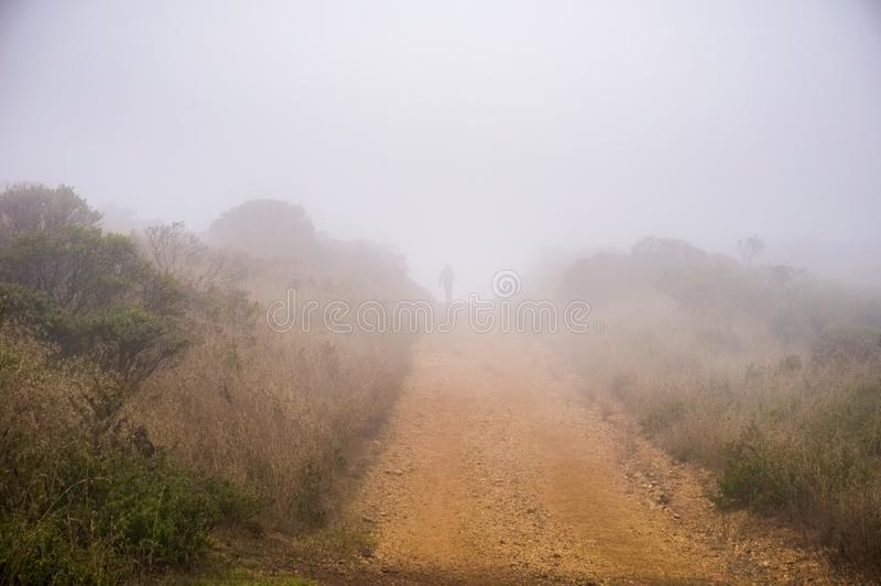 Silhouette of a runner in the Headlands area of Golden Gate National Recreation Area on a foggy summer day, Marin County,. California royalty free stock photo
