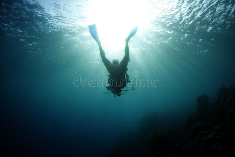 Silhouette scuba diver tropical,roatan,honduras