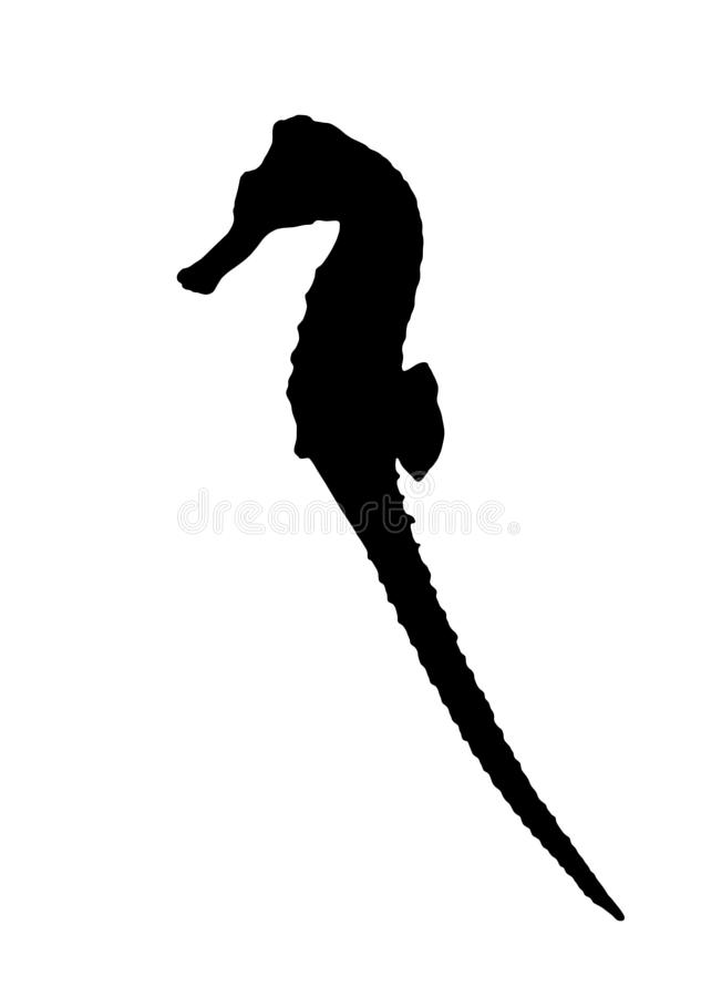 Silhouette of sea horse on white background stock illustration