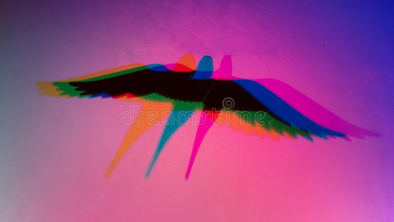 Silhouette shadow of a bird stock photography