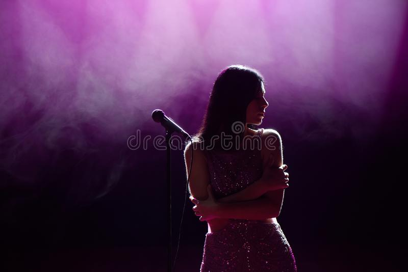 Silhouette of singer on stage. Dark background, smoke, spotlights. royalty free stock image