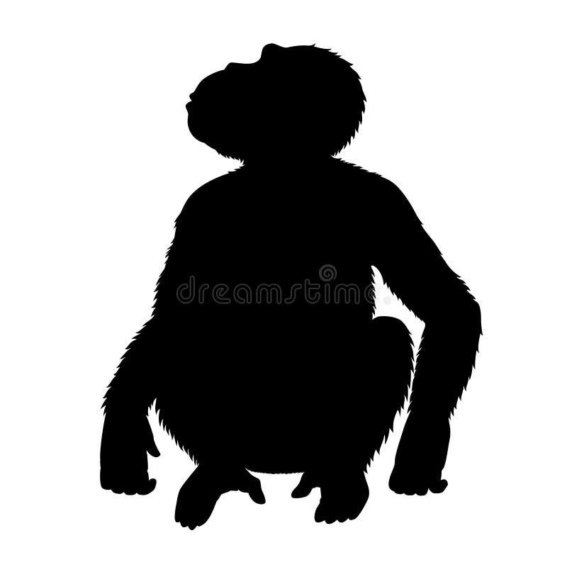 Chimpanzee Sitting On The Ground Stock Photo - Image: 57791787  |Chimp Sitting