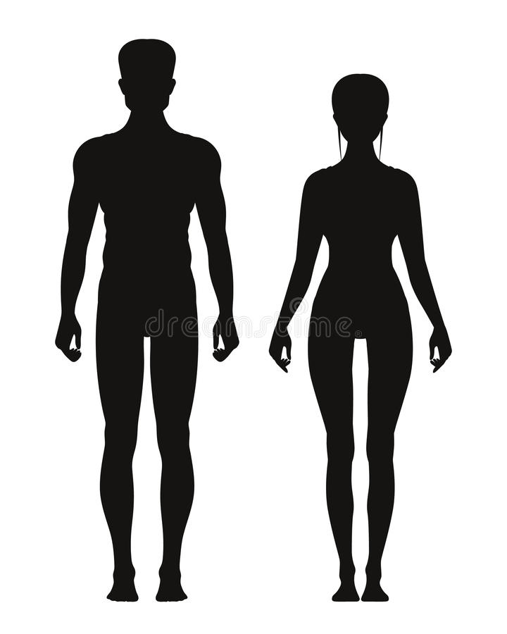 Silhouette of sporty male and female standing front view. Vector anatomy models stock illustration
