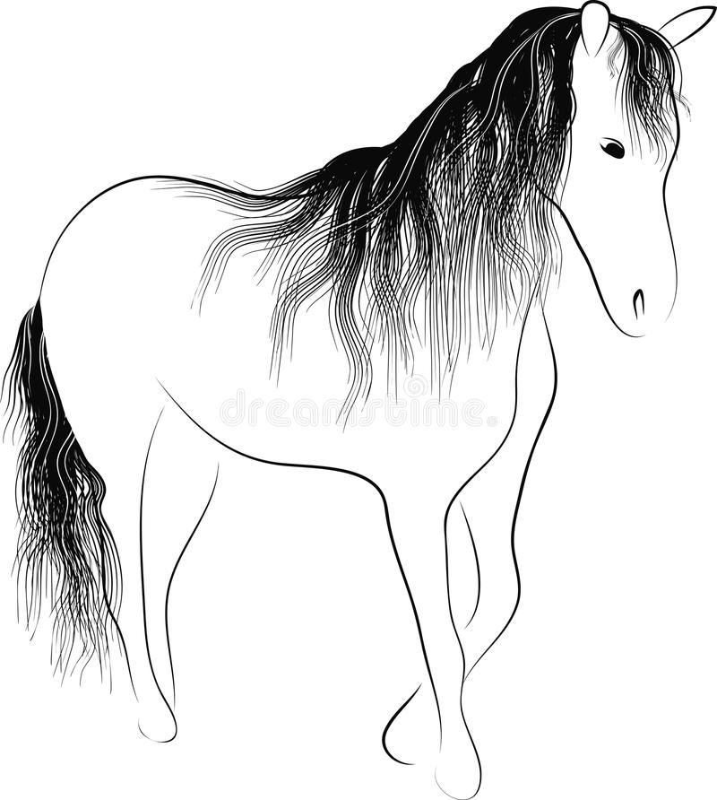 Download Silhouette standing horse stock vector. Image of black - 36703541