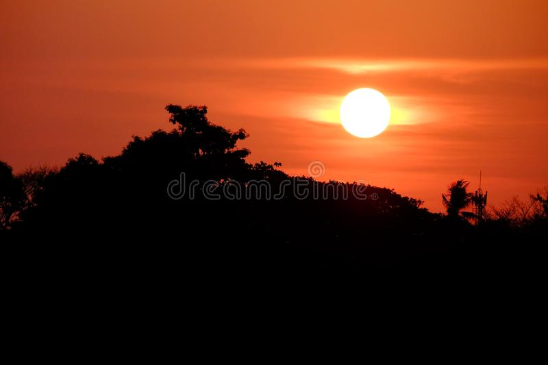 Silhouette sunset on orange sky at dusk with top trees shadow. Twilight time and sky atmosphere royalty free stock photo