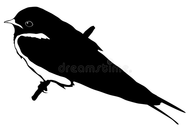 Download Silhouette of swallow stock vector. Illustration of element - 14038622