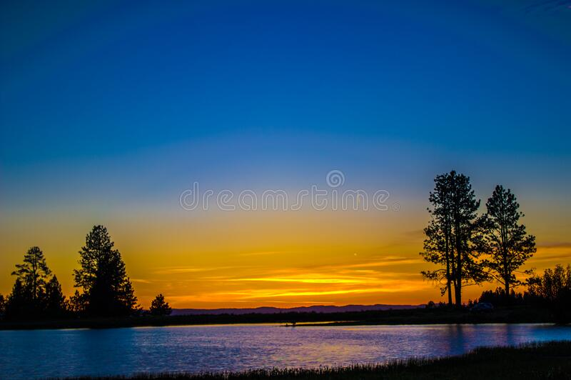 Silhouette Of A Tree Beside Body Of Water Under Blue And Yellow Sky During Sunset Free Public Domain Cc0 Image
