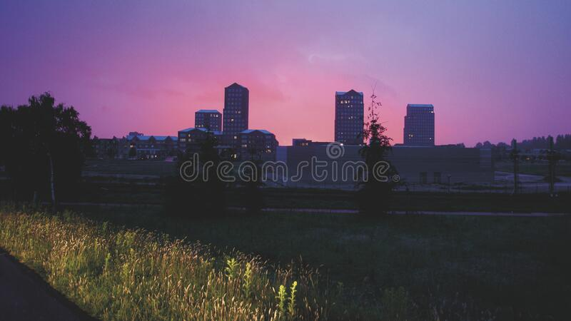 Silhouette of Tree and High Rise Building during Sunset royalty free stock images