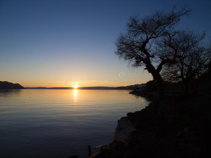 Silhouette Of Tree During Sunset. At Chillon Castle, Lake Geneva stock photos