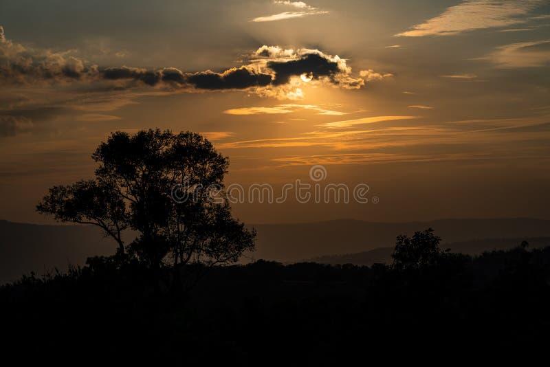 Silhouette tree mountain range sunset. Silhouette tree mountain range before sunset stock image