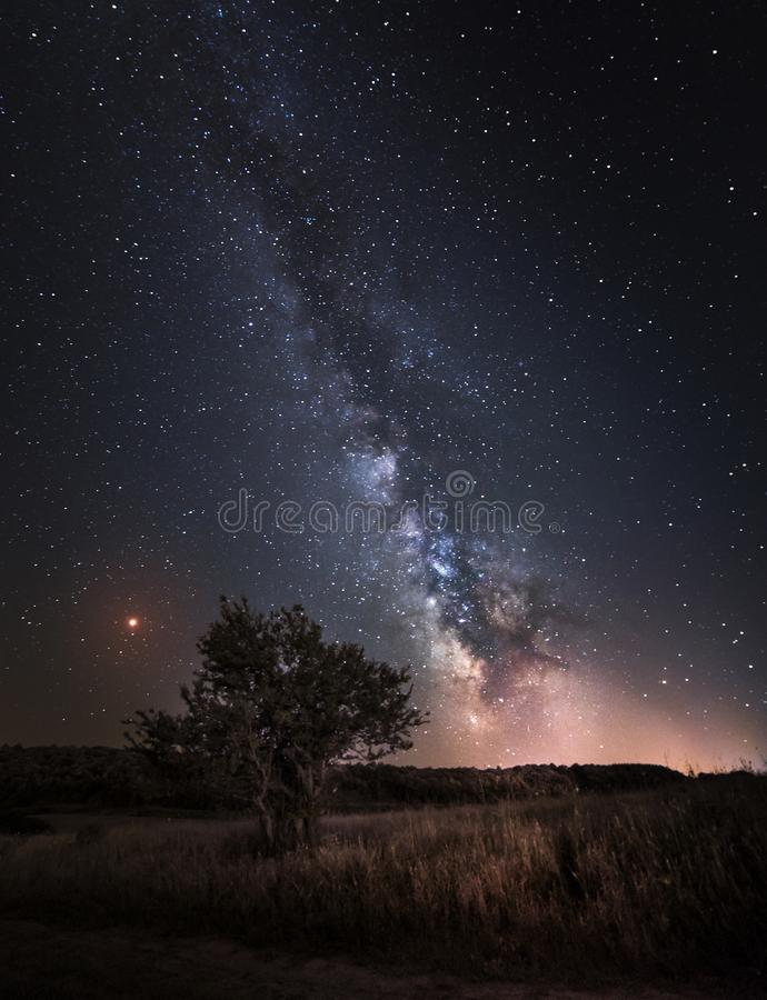 Silhouette of Tree with natural landscape and Milky Way galaxy. Night sky with stars and planet Mars. Long exposure photography. Summer astrophotography royalty free stock photography