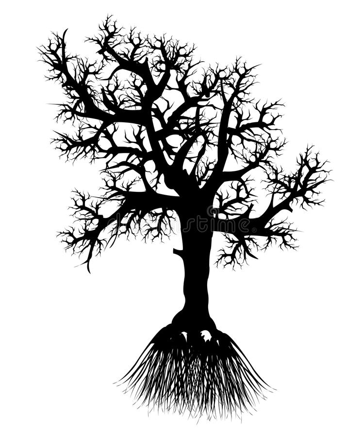 Download Silhouette tree with root stock vector. Illustration of drawing - 27601544
