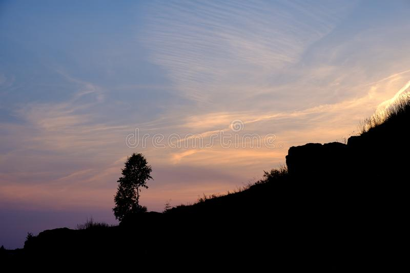 Silhouette of a tree on the slope of a rock against the sunset sky, a landscape in the summer. Evening royalty free stock images