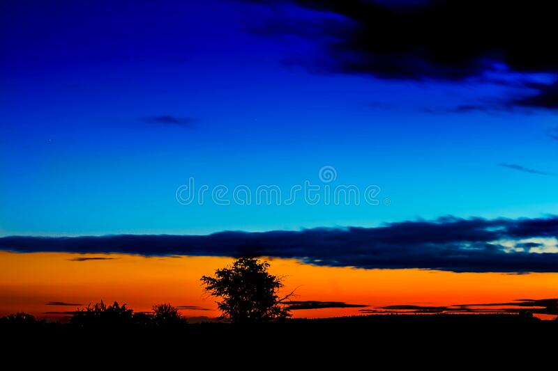 Silhouette of tree at sunset stock images