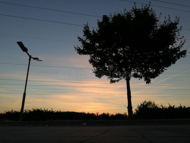 Silhouette of a tree after sunset. There is a silhouette of a tree after sunset with red cloud in countryside. with street lamp royalty free stock images