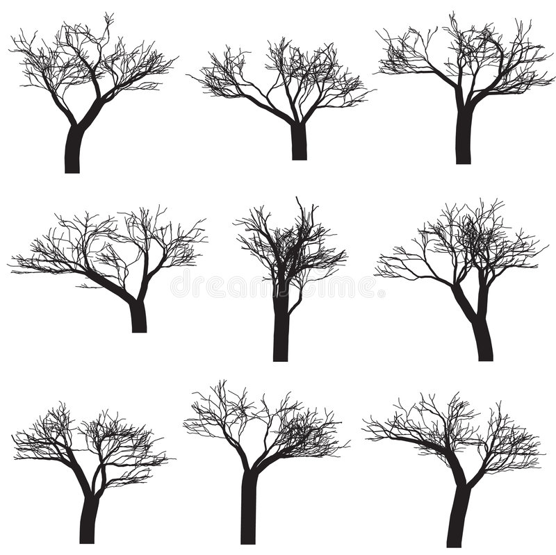 Download Silhouette Trees stock vector. Image of birch, illustration - 6877132