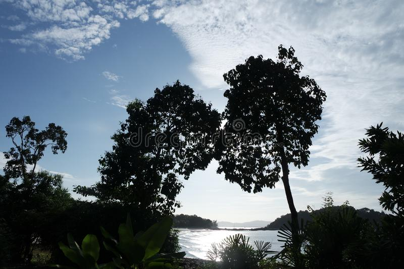 Silhouetted trees in Langkawi royalty free stock images