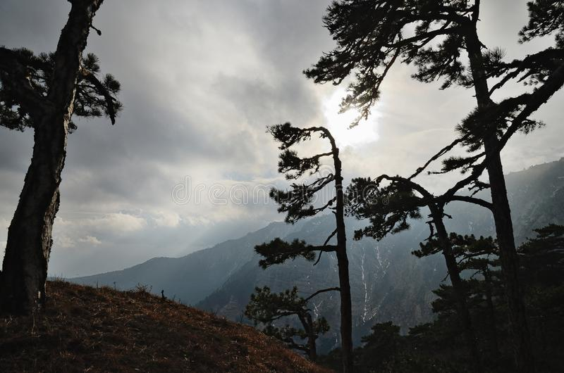 Silhouette of trees against mountainside and cloudy sky. royalty free stock photography