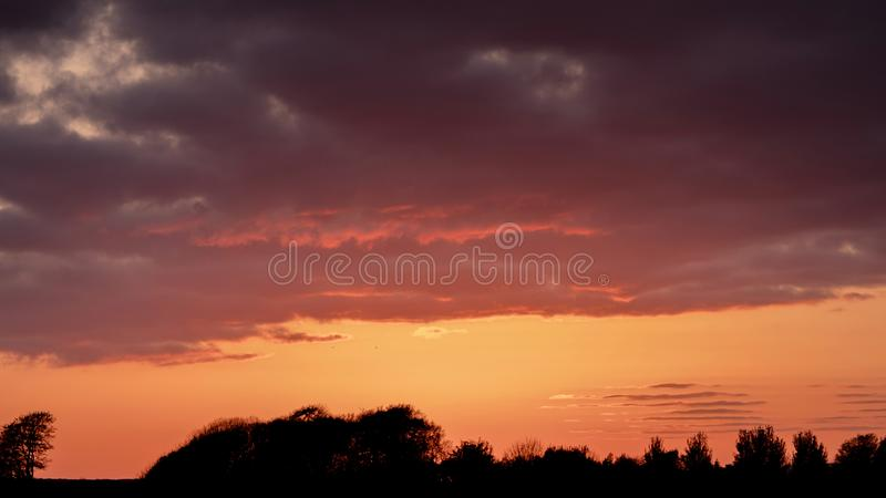 Silhouette of trees against sunset sky. Warm orange colors royalty free stock image