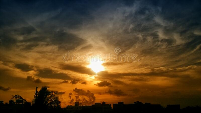 Silhouette of Trees and Buildings during Golden Hour stock photos