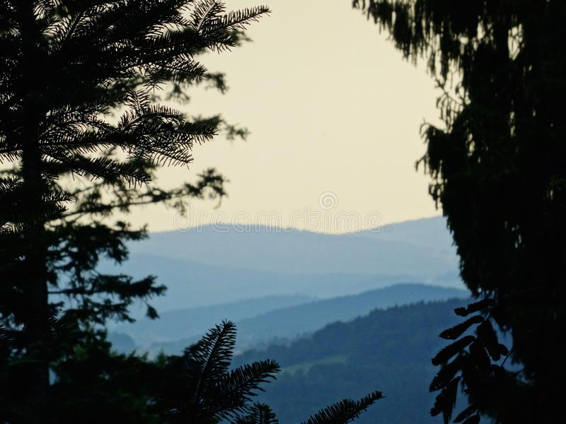 Silhouette Of Trees With Mountain On Distant Free Public Domain Cc0 Image