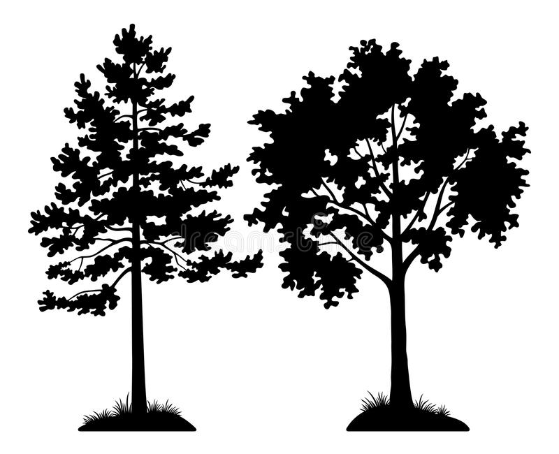 Silhouette Trees Pine and Maple royalty free illustration