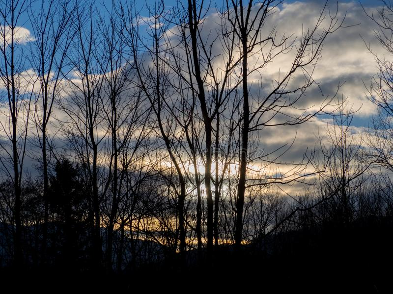 Silhouette trees and sky with clouds. In the evening stock photography