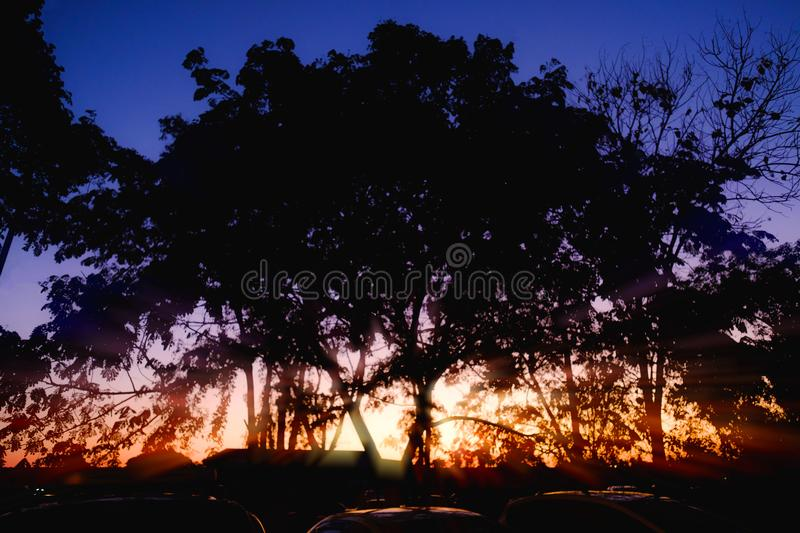Silhouette trees with sunset light in the evening. So powerful royalty free stock photos