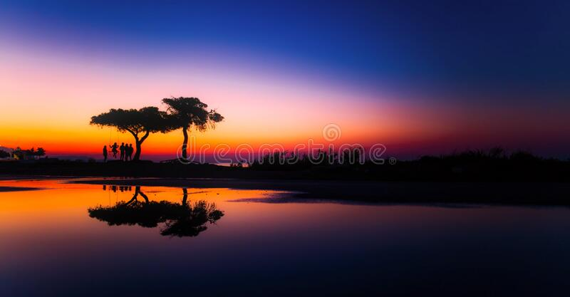 Silhouette of trees at sunset stock images