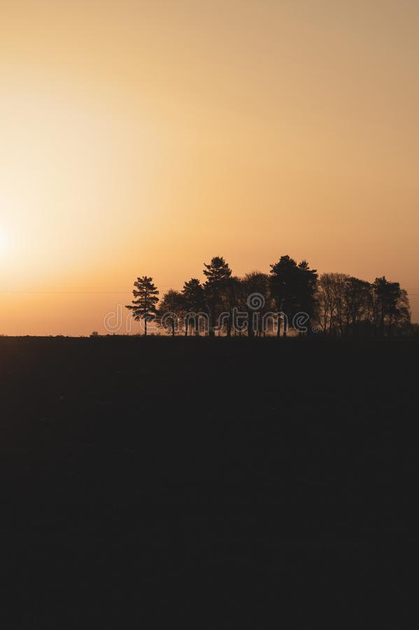 Silhouette of the trees at sunset. sun setting behind the forest. Evening landscape stock image