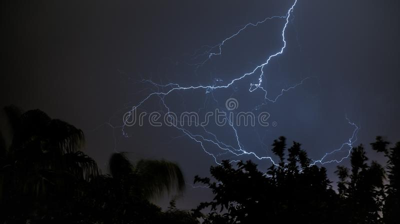 Silhouette Of Trees Under White Lightning During Night Time Free Public Domain Cc0 Image