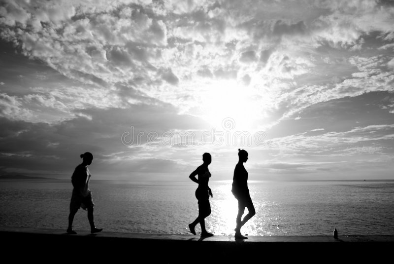 Silhouette tropicale photos libres de droits