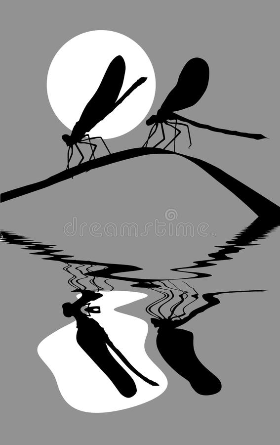 Download Silhouette two dragonflies stock vector. Image of herb - 16291420