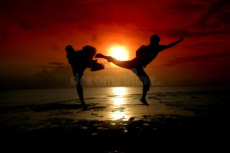 Download Silhouette Of Two People Fighting Stock Photo - Image: 18506140