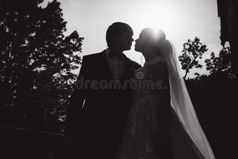 Silhouette of two people kissing. groom and bride on wedding.  stock photography