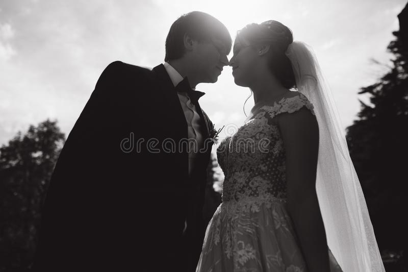 Silhouette of two people kissing. groom and bride on wedding.  royalty free stock photos