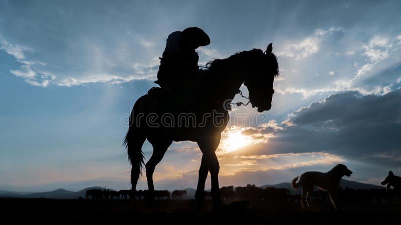 Silhouette of an unidentified man riding a horse in dusk stock photo