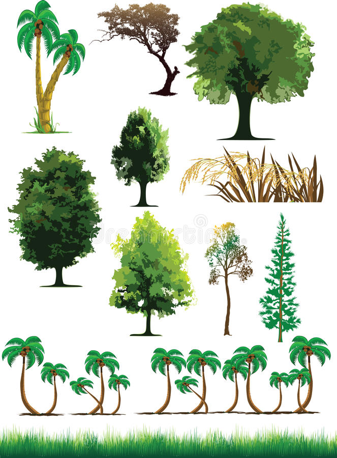 Silhouette View Of Trees, Plants, Grass, Wildlife Royalty Free Stock Photos
