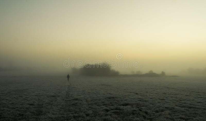 Silhouette walking in the fog on a frosty field royalty free stock image
