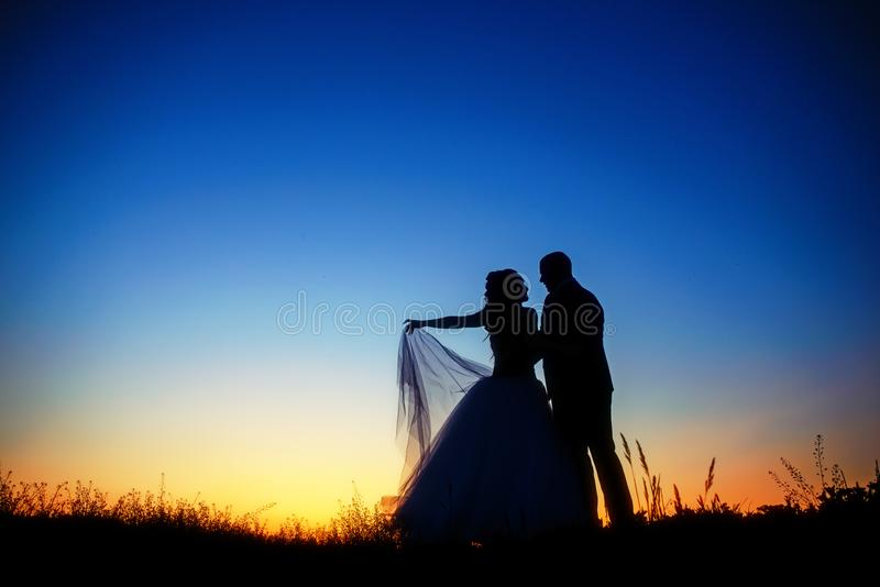 Wedding couple in field. Bride and groom together. stock image