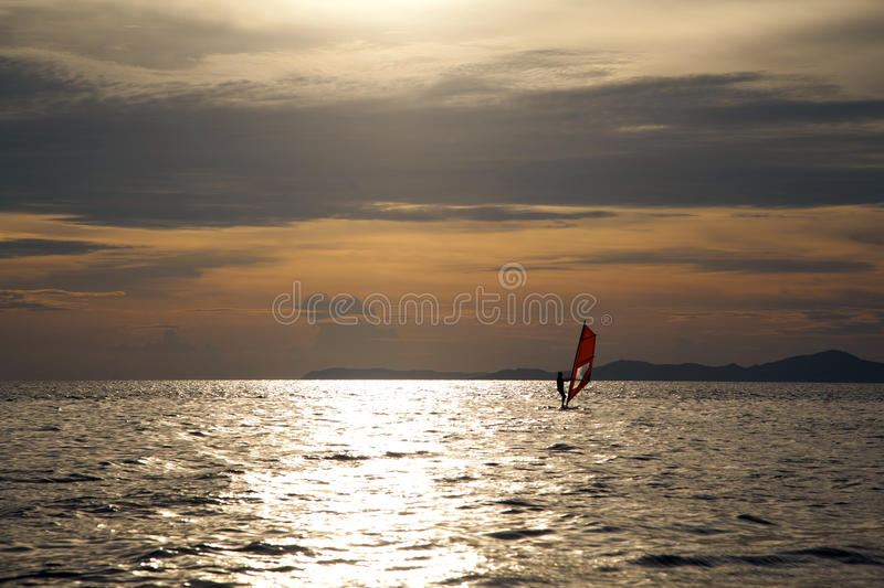 Silhouette of windsurfers. In the sunset sea royalty free stock images