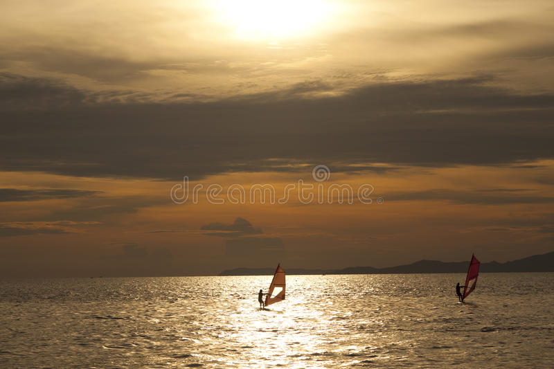 Silhouette of windsurfers. In the sunset sea stock images