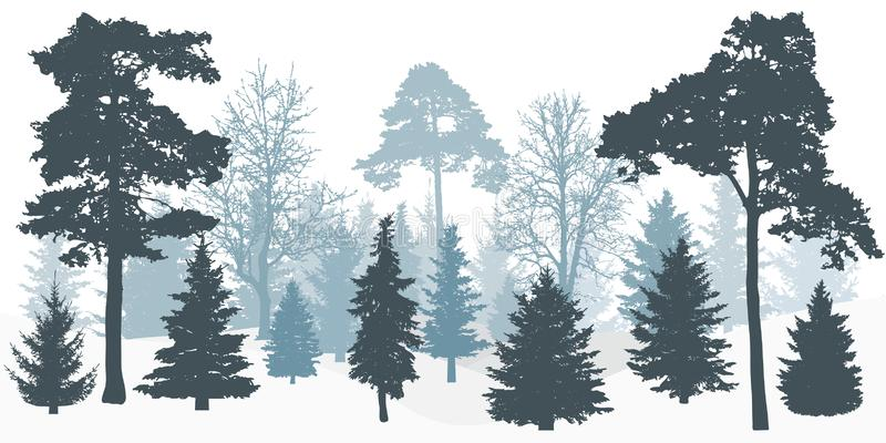 Silhouette of winter snowy forest trees. stock illustration