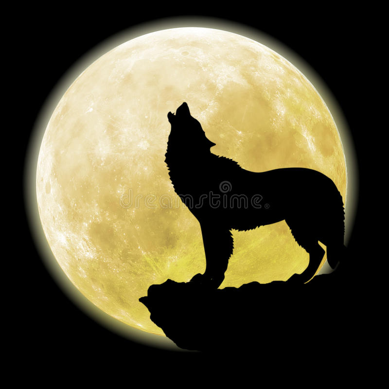 Dog Barking At Full Moon