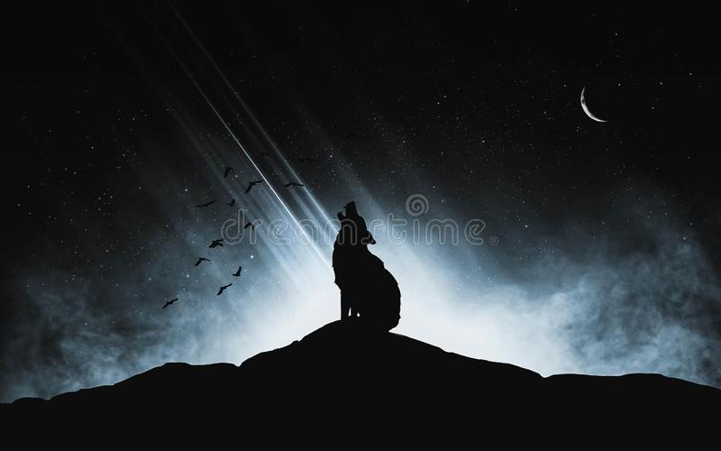 A silhouette of a wolf howling at the moon on a dark hill with a light source in the background stock photo