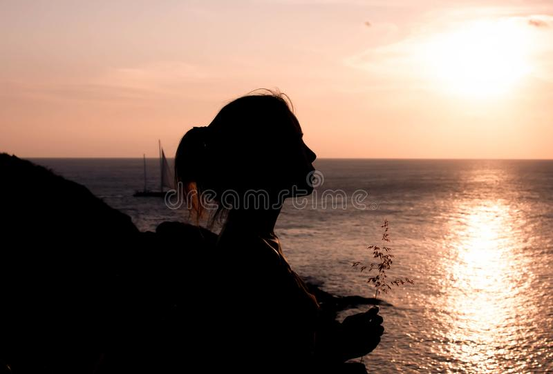 Silhouette of a woman face royalty free stock images