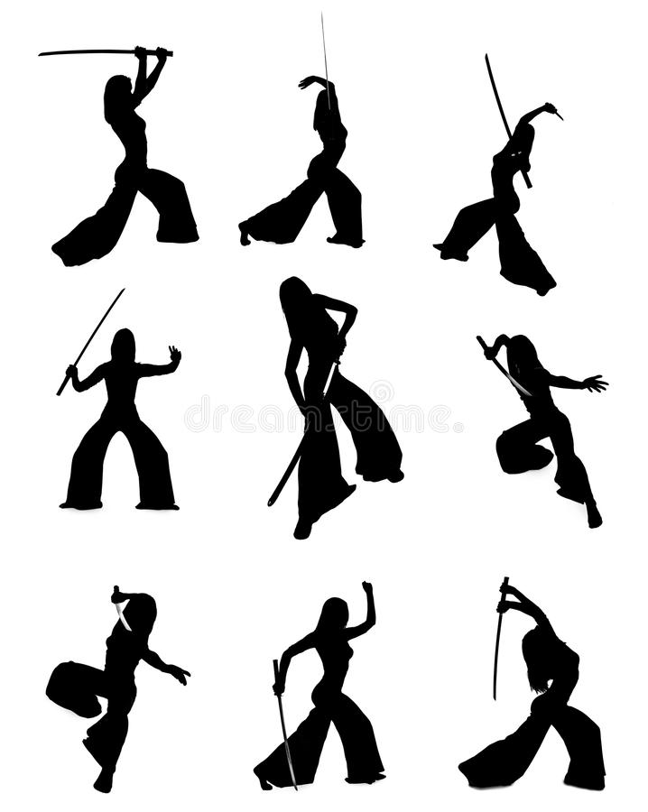 Download Silhouette Of Woman With A Japanese Sword Stock Photo - Image: 21264616