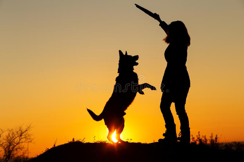 Silhouette woman playing with dog in the field, pet jumping for wooden stick in girl`s hand on nature, German shepherd breed, stock image
