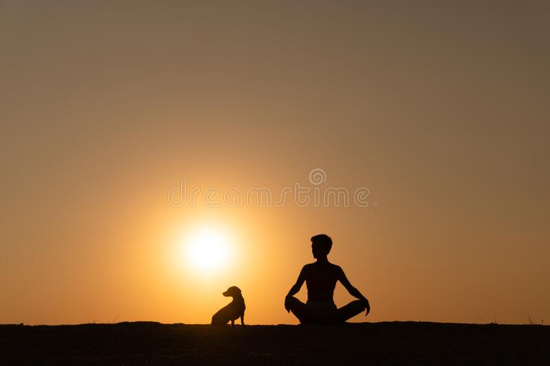 A silhouette of a woman is sitting on the beach royalty free stock photos
