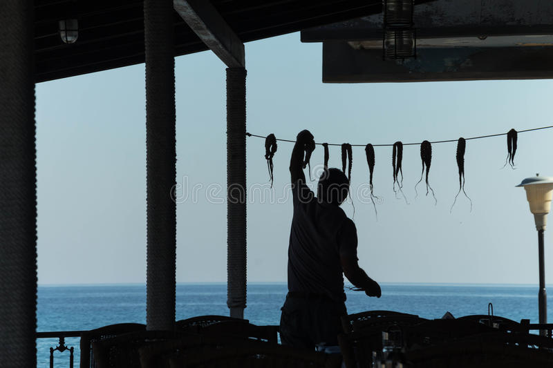 Silhouette of the working person. Silhouette of a man weighing octopus on the background of the sea royalty free stock photos